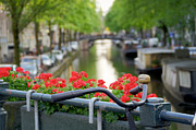 Reflection Of Geranium Flower Framed Prints - Bicycle on canal bridge Framed Print by Oscar Gutierrez