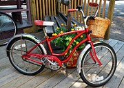 Pedals Photo Prints - Bicycle On The Go Print by Mel Steinhauer