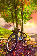 Sunset Scenes. Prints - Bicycle Under the Tree Print by Debra and Dave Vanderlaan