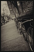 Shawn Colborn - Bicycles in Rittenhouse...