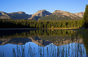 Bierstadt Photo Metal Prints - Bierstadt Lake Rocky Mountain National Park Metal Print by Posters of Colorado