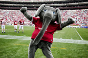 Tuscaloosa Photo Prints - Big Al Print by Carol M Highsmith