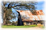 William Havle - Big Barn on McCourtney