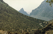 Dirt Roads Photo Originals - Big Bend National Park by Ruth  Housley