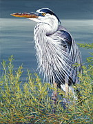Great Blue Heron Paintings - Big Blue by Danielle  Perry