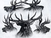 Elk Drawings - Big Boys Bugle Club by Melissa Fuller