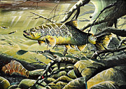 Brown Trout Art - Big Brown by Doug Heavlow