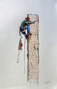 Tree. Sycamore Paintings - Big chainsaw Husqvarna stihl by Gordon Lavender