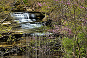 Matthew Winn Posters - Big Clifty Falls Poster by Matthew Winn