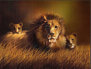 Lion Cubs Posters - Big Daddy Poster by Robert Foster