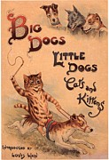 Nineteen-tens Art - Big Dogs Little Dogs Cats And Kittens by The Advertising Archives