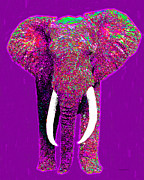 Circus Elephant Posters - Big Elephant 20130201m68 Poster by Wingsdomain Art and Photography