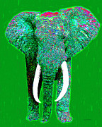 Tusk Digital Art Prints - Big Elephant 20130201p128 Print by Wingsdomain Art and Photography