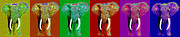 Wingsdomain Art and Photography - Big Elephant Six 201...