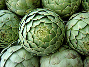 Jo L - Big Lion Heart Artichokes