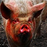Pig Digital Art Posters - Big Pig - 2013-0107 - Electric - square Poster by Wingsdomain Art and Photography