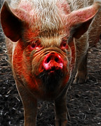 Pig Digital Art Prints - Big Pig - 2013-0107 - Electric Print by Wingsdomain Art and Photography