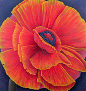 Blue Purple Paintings - Big Poppy by Ruth Addinall