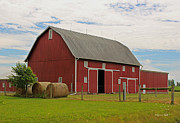 Rural Indiana Prints - Big Red Barn II - Carroll County Indiana Print by Suzanne Gaff