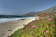 Big Sur Ca Art - Big Sur Beach by Jane Linders