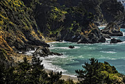 Big Sur Beach Framed Prints - Big Sur Beach Framed Print by Lynn Andrews