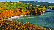 Pfeiffer Paintings - Big Sur California Coastline by Nadine and Bob Johnston