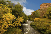 Northern Colorado Prints - Big Thompson River 2 Print by Jon Burch Photography