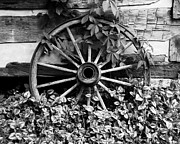 Log Cabins Photo Acrylic Prints - Big Wheel bw Acrylic Print by Mel Steinhauer