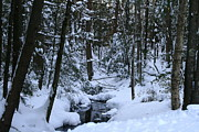 Snowy Brook Art - Bigelow Brook by Neal  Eslinger