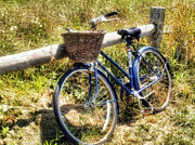 Tammy Wetzel - Bike at Nantucket Beach