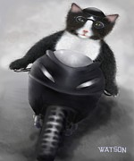 Marlene Watson Art - Bike riding tuxedo cat Tetley by Marlene Watson