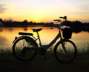 Lifestyle Pyrography Prints - Bike Silhouette In The River Print by Thanapol Kuptanisakorn
