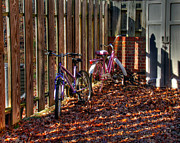 Andy Lawless - Bikes waiting for Spring