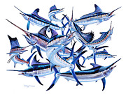 Black Marlin Framed Prints - Bills OFF0044 Framed Print by Carey Chen