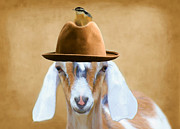 Goat Mixed Media Posters - Billy the Kid Poster by Susan Schwarting