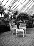 Asheville Photos - BILTMORE SOLARIUM Asheville NC by William Dey