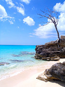 Freeport Prints - Bimini Beach Print by Carey Chen