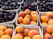 Farm Stand Art - Bings and Apricots by Susan Colby