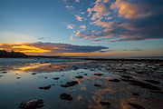 Nigel Hamer - Binstead Beach