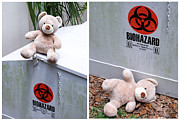 Medicine Bear Prints - Biohazard Warning Print by William Patrick