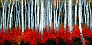 Michael Swanson Framed Prints - Birch 24 x 48 Framed Print by Michael Swanson