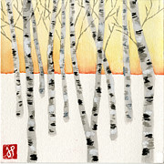 Jamie Seul Posters - Birch at Sunrise Poster by Jamie Seul