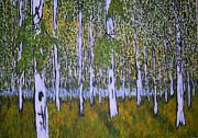 Zeke Nord - Birch Forest