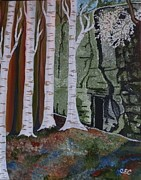 White Flowering Bush Paintings - Birch Hollow by Carolyn Cable