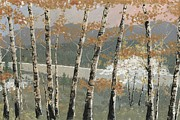 Birch Trees Paintings - Birch Stand by John Wyckoff