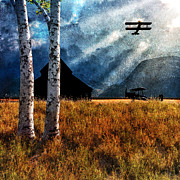 Old Barn Painting Posters - Birch Trees and Biplanes  Poster by Bob Orsillo