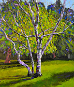 Anthony Sell - Birch Trees