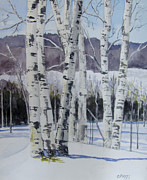 Carol Flagg - Birch Trees in Winter