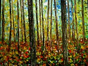 Fields Of Flowers Paintings - Birch Trees by Sharon Wood