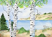Sand Dunes Paintings - Birches and sand dunes by Connie Mclaren
